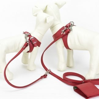 two dog leash red with dog dummies