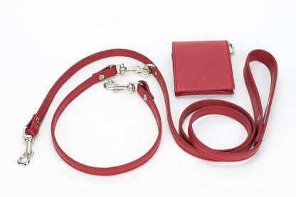 two dog leash red